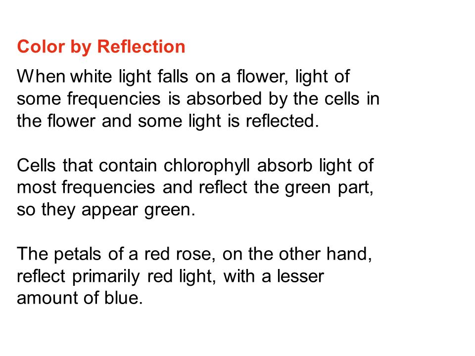 Color by Reflection When white light falls on a flower, light of some frequencies is absorbed by the cells in the flower and some light is reflected.