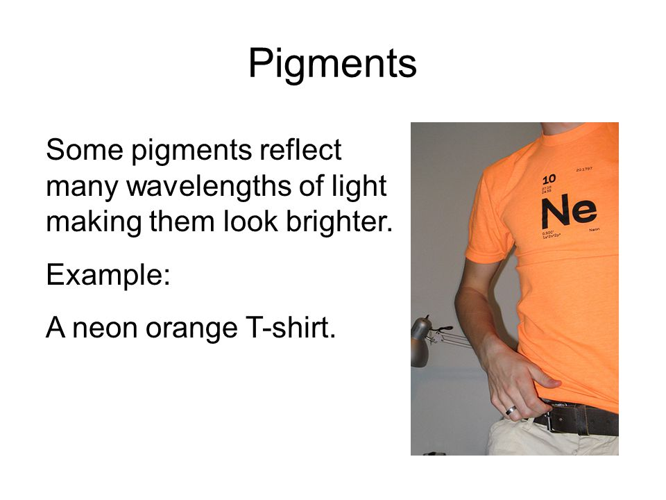 Pigments Some pigments reflect many wavelengths of light making them look brighter.