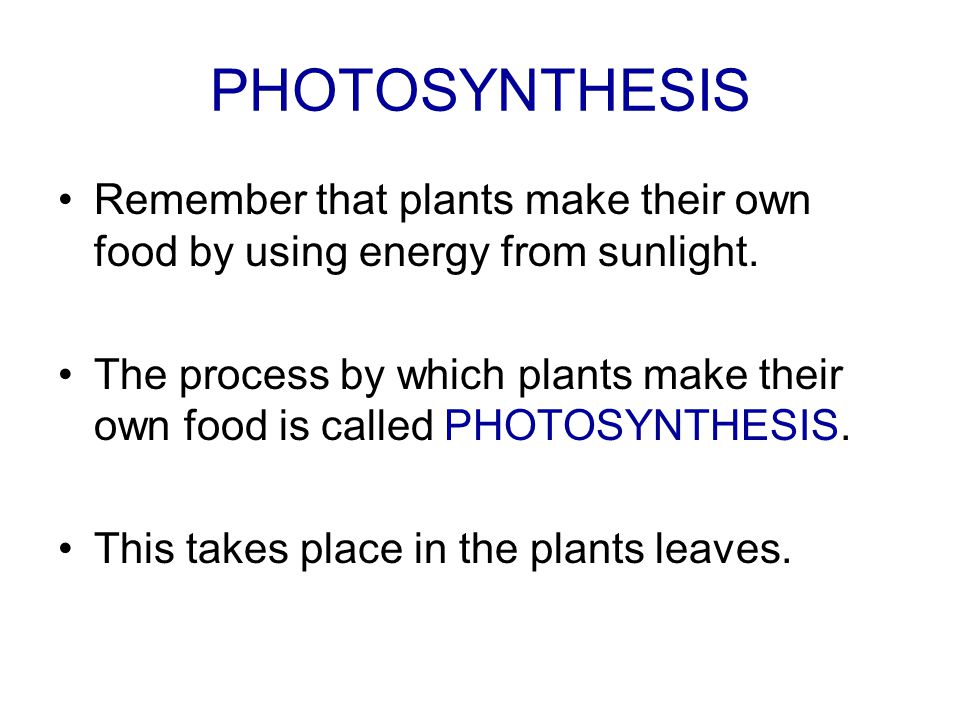 PHOTOSYNTHESIS Remember that plants make their own food by using energy from sunlight.