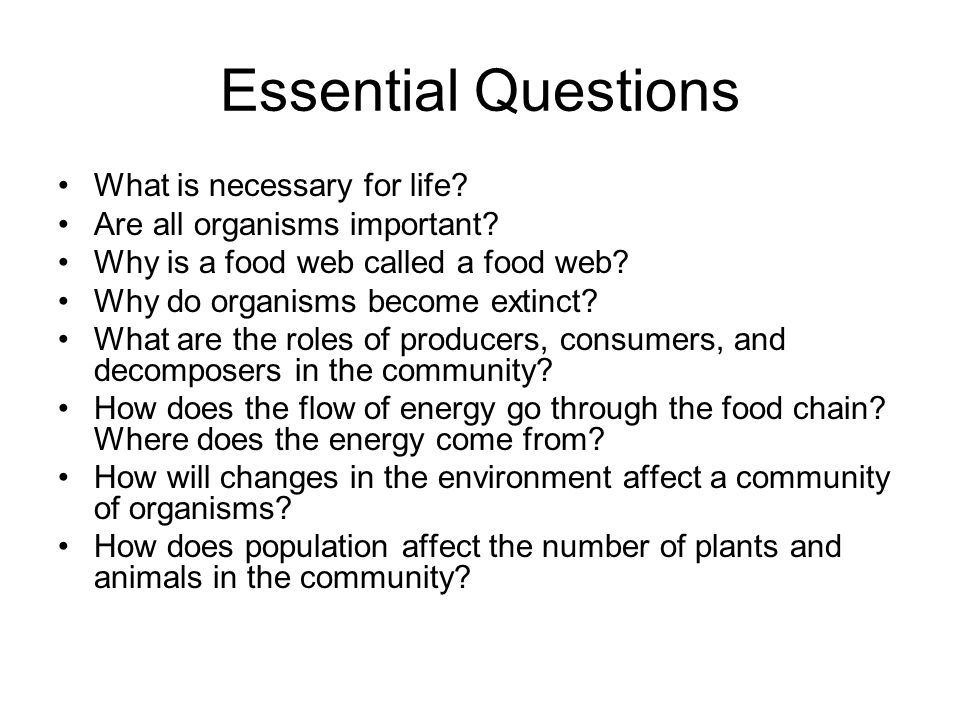 Essential Questions What is necessary for life