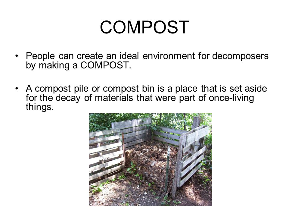 COMPOST People can create an ideal environment for decomposers by making a COMPOST.