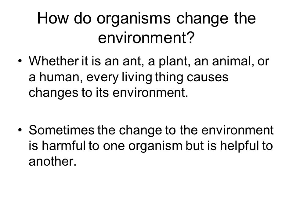 How do organisms change the environment