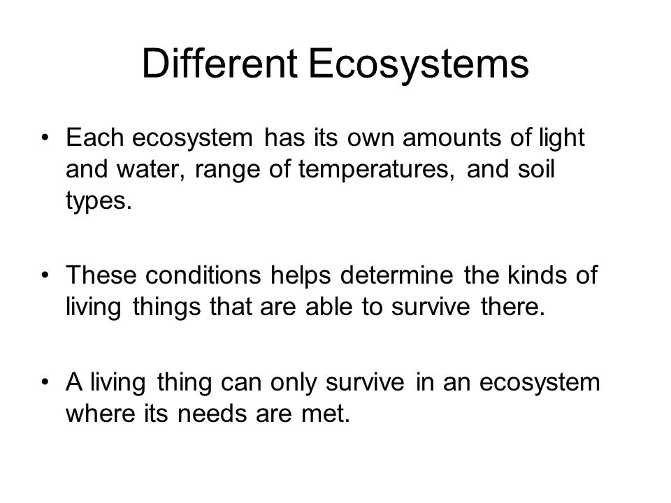 Different Ecosystems Each ecosystem has its own amounts of light and water, range of temperatures, and soil types.