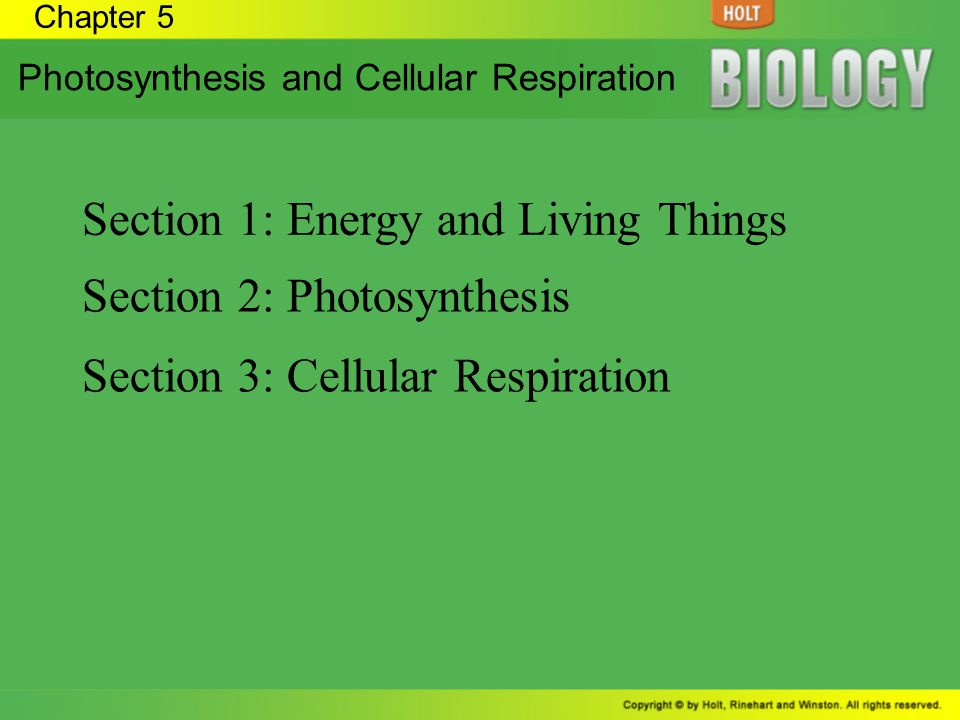 Section 1: Energy and Living Things
