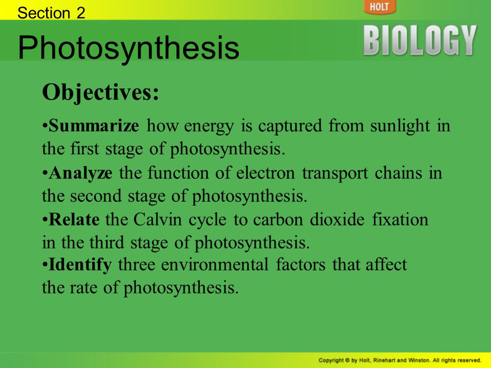 Photosynthesis Objectives: