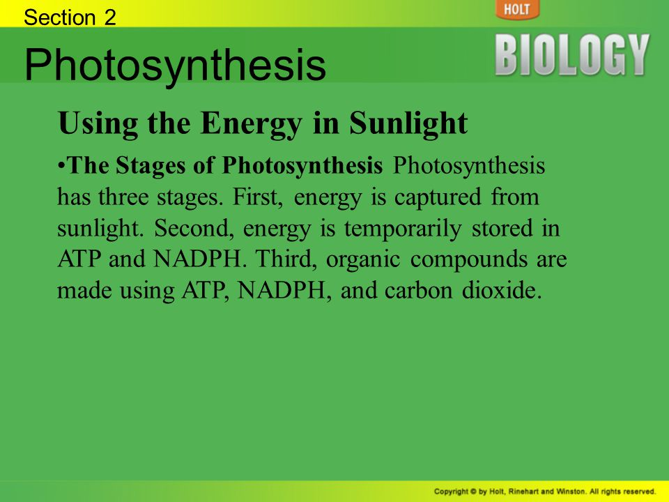 Photosynthesis Using the Energy in Sunlight