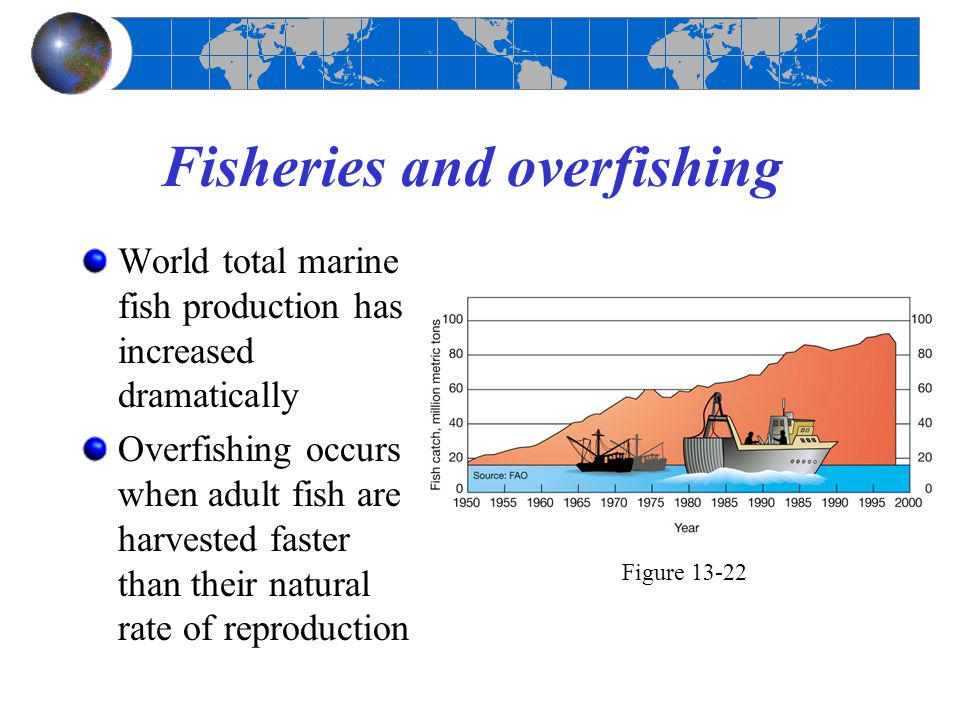 Fisheries and overfishing