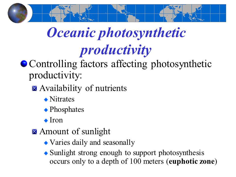 Oceanic photosynthetic productivity