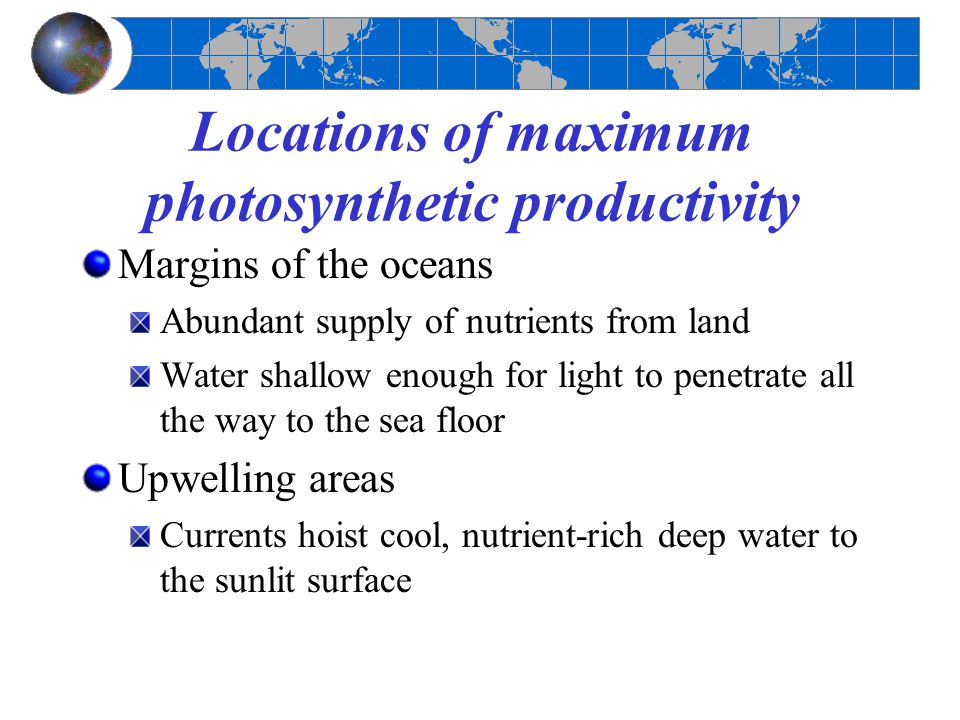Locations of maximum photosynthetic productivity