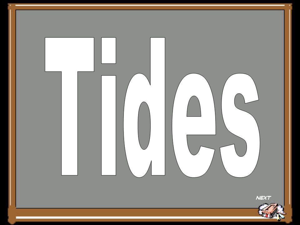 Tides NEXT