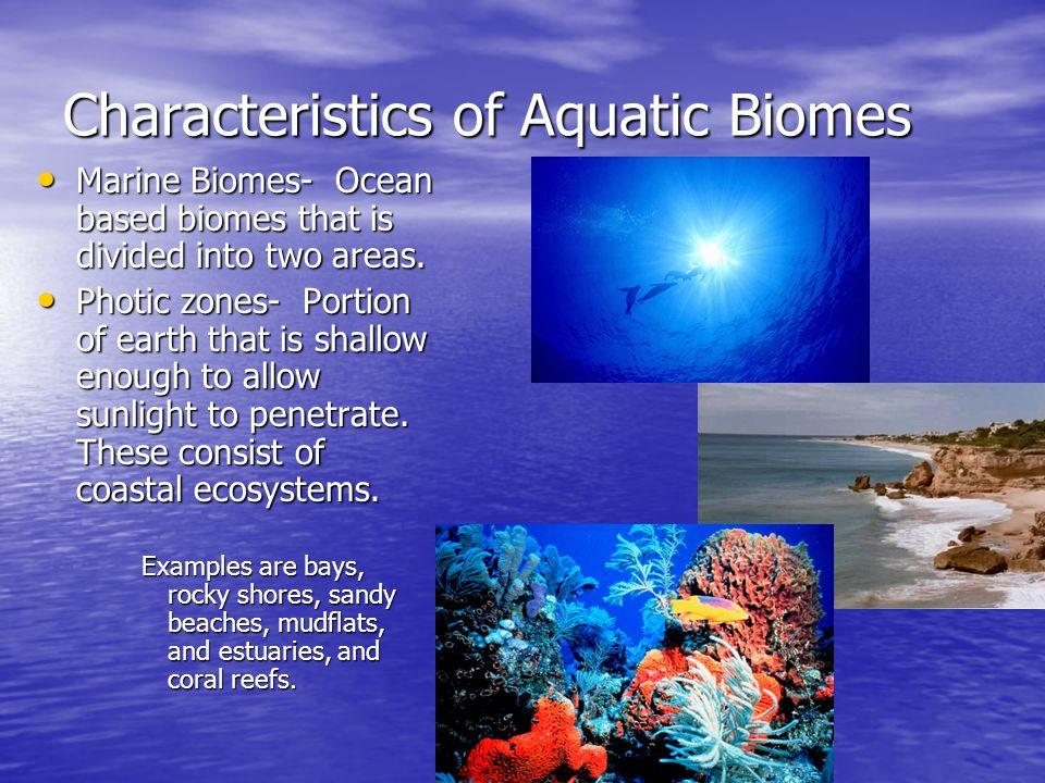 Characteristics of Aquatic Biomes