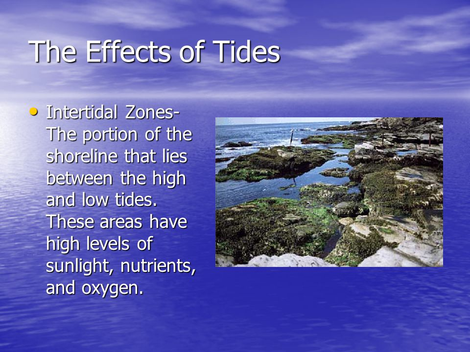 The Effects of Tides