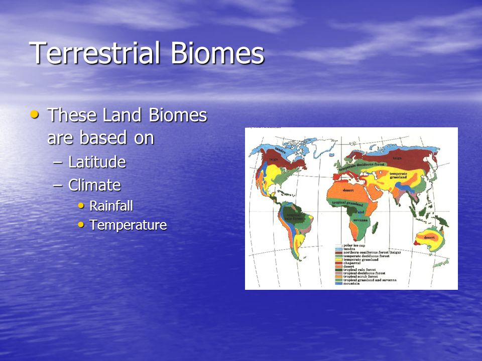 Terrestrial Biomes These Land Biomes are based on Latitude Climate