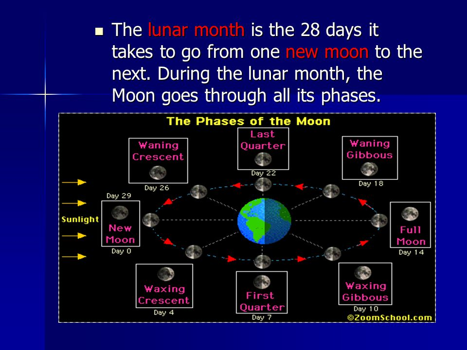 The lunar month is the 28 days it takes to go from one new moon to the next.