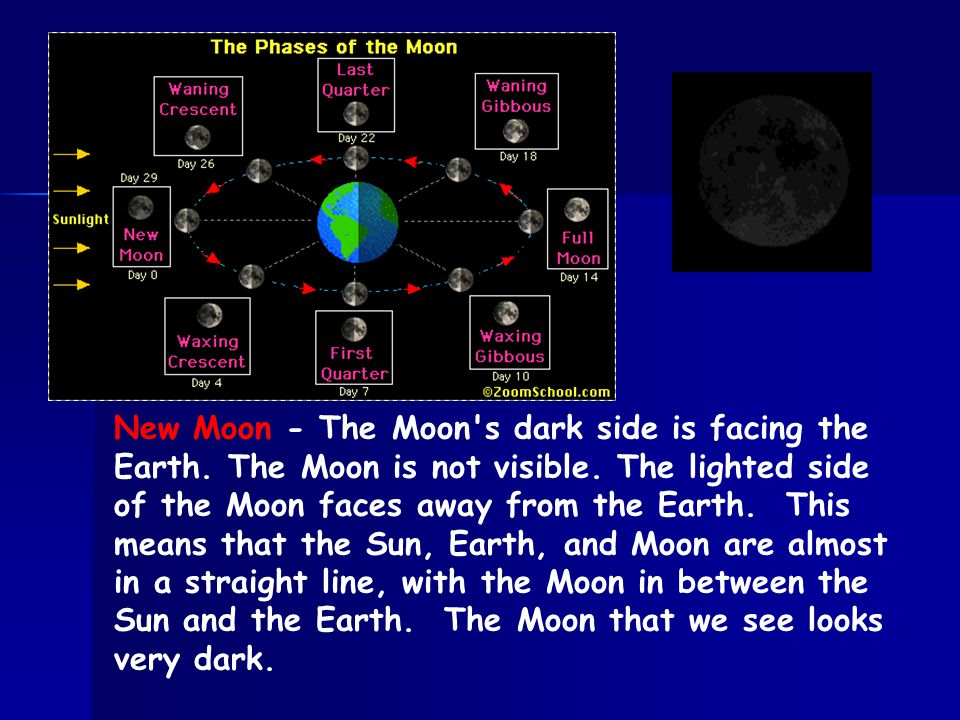 New Moon - The Moon s dark side is facing the Earth