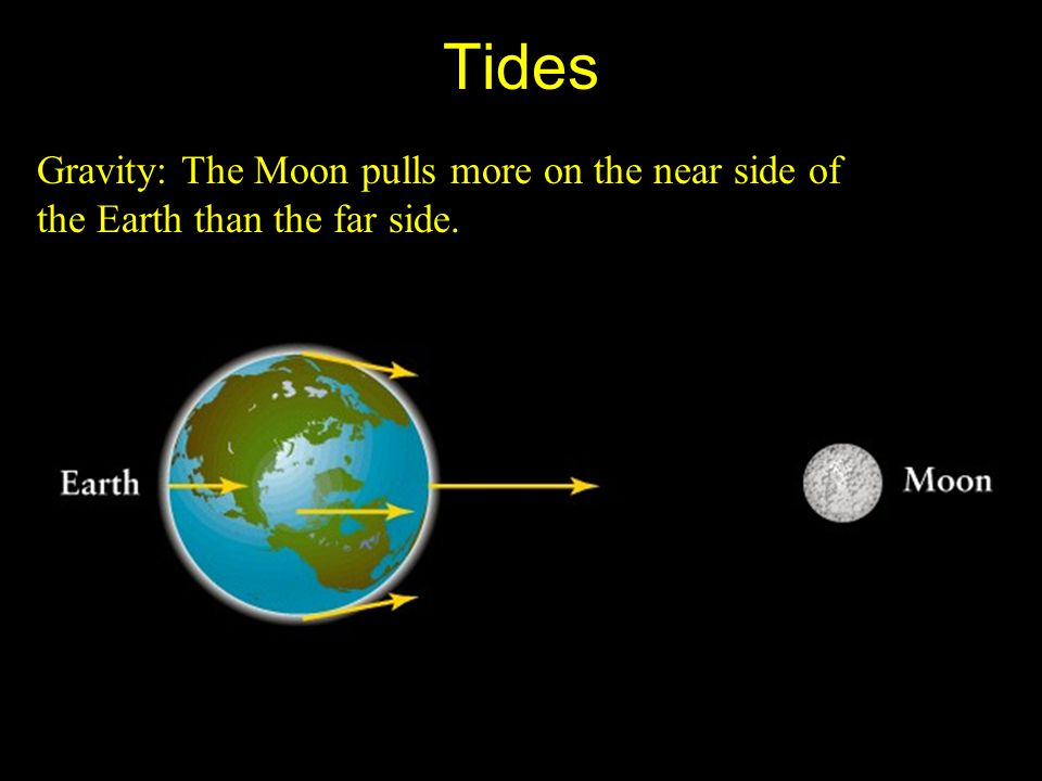 Tides Gravity: The Moon pulls more on the near side of the Earth than the far side.