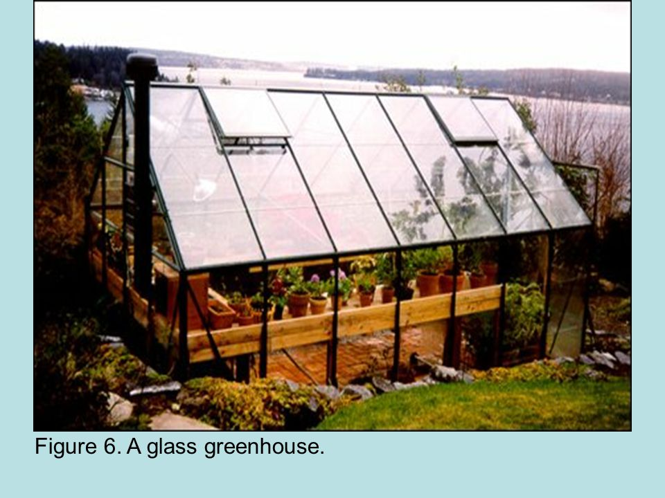 Figure 6. A glass greenhouse.