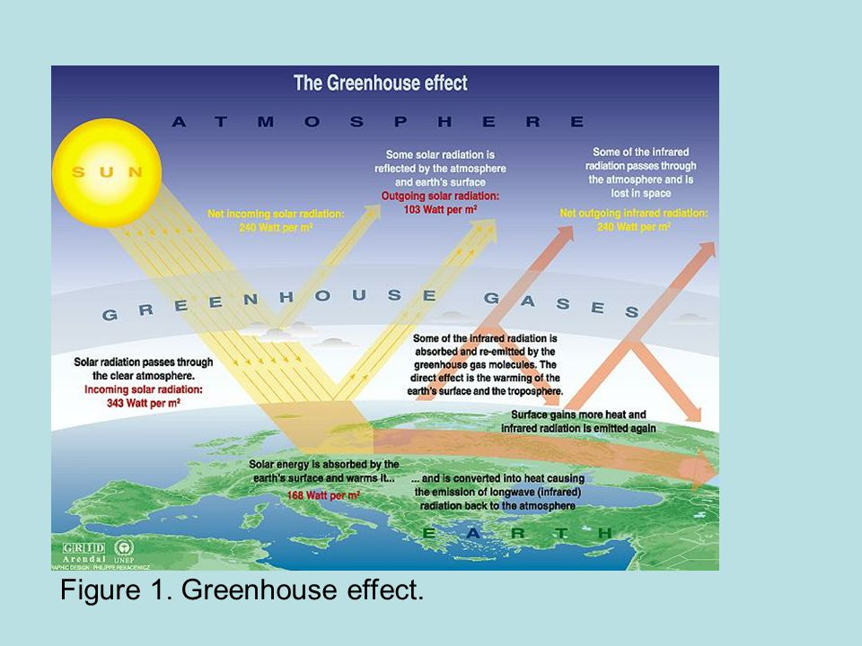 Figure 1. Greenhouse effect.