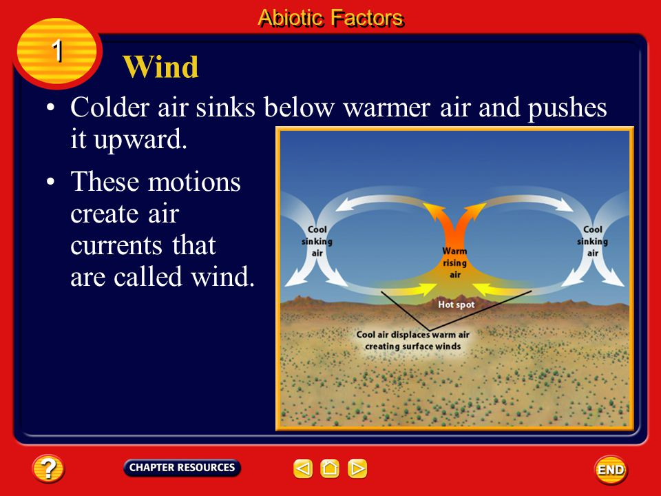 Wind 1 Colder air sinks below warmer air and pushes it upward.