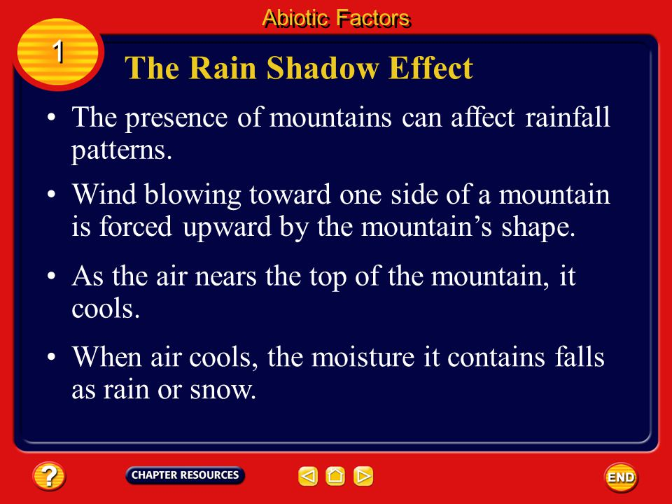 Abiotic Factors 1. The Rain Shadow Effect. The presence of mountains can affect rainfall patterns.