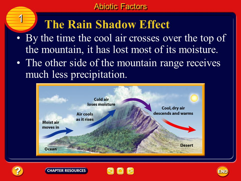 Abiotic Factors 1. The Rain Shadow Effect. By the time the cool air crosses over the top of the mountain, it has lost most of its moisture.
