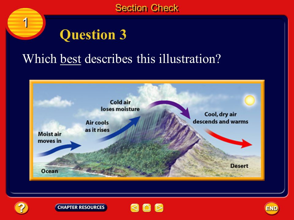 Section Check 1 Question 3 Which best describes this illustration