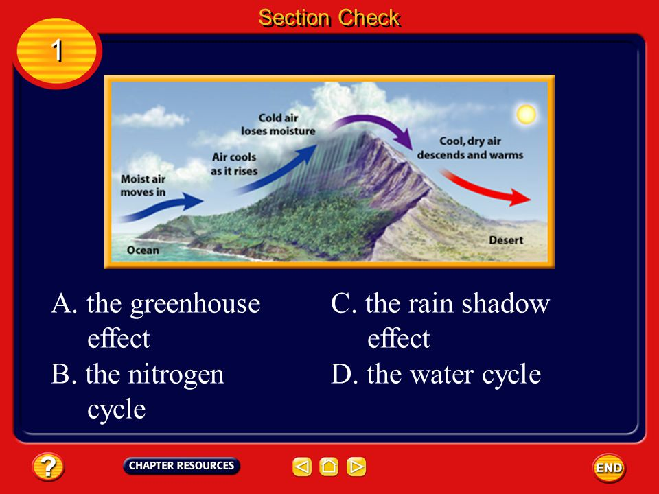 1 A. the greenhouse effect B. the nitrogen cycle C. the rain shadow