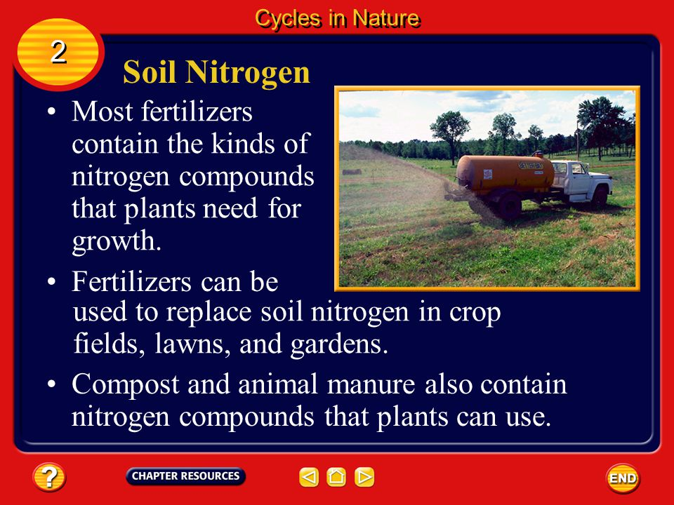 Cycles in Nature 2. Soil Nitrogen. Most fertilizers contain the kinds of nitrogen compounds that plants need for growth.