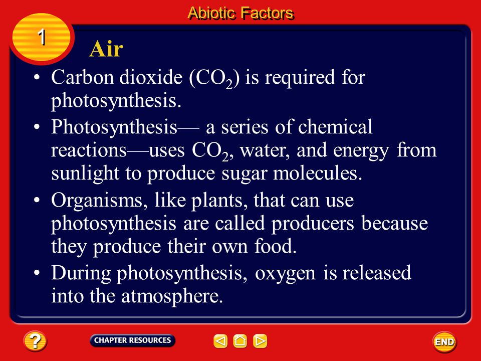 Air 1 Carbon dioxide (CO2) is required for photosynthesis.