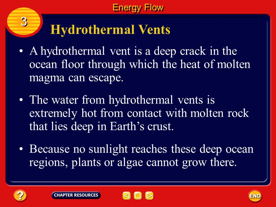 Energy Flow 3. Hydrothermal Vents. A hydrothermal vent is a deep crack in the ocean floor through which the heat of molten magma can escape.