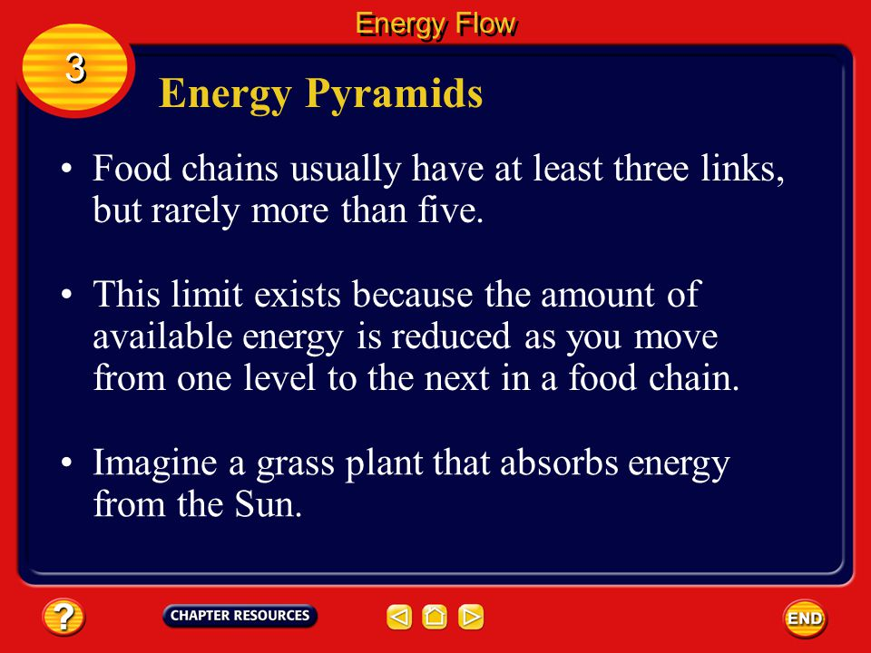 Energy Flow 3. Energy Pyramids. Food chains usually have at least three links, but rarely more than five.