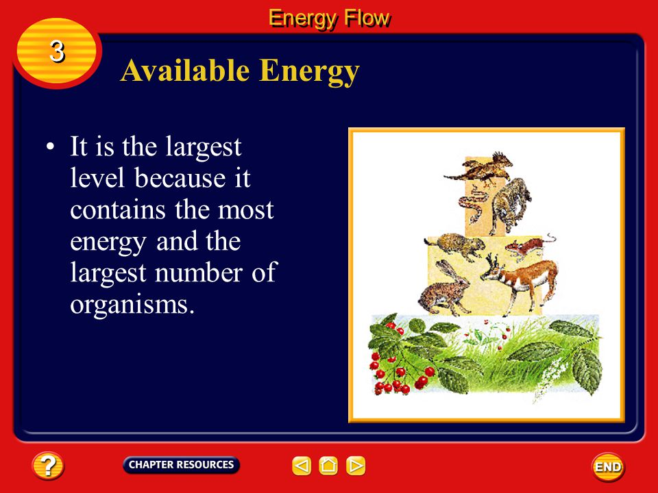 Energy Flow 3. Available Energy.
