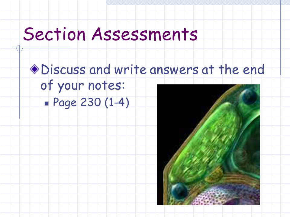 Section Assessments Discuss and write answers at the end of your notes: Page 230 (1-4)
