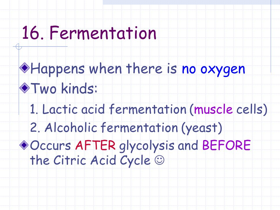 16. Fermentation Happens when there is no oxygen Two kinds: