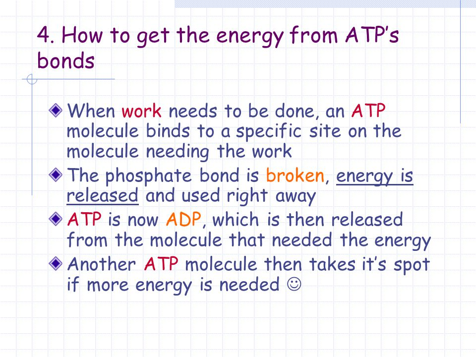 4. How to get the energy from ATP's bonds