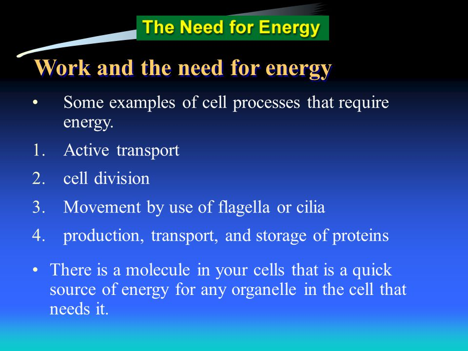 Work and the need for energy