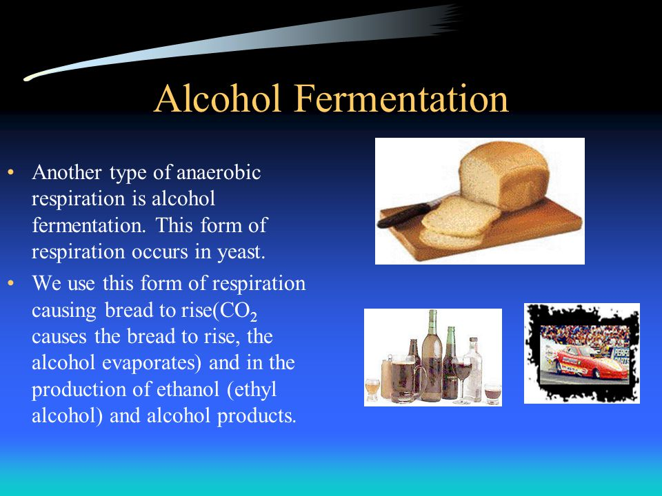 Alcohol Fermentation Another type of anaerobic respiration is alcohol fermentation. This form of respiration occurs in yeast.