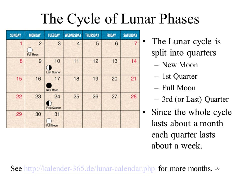The Cycle of Lunar Phases