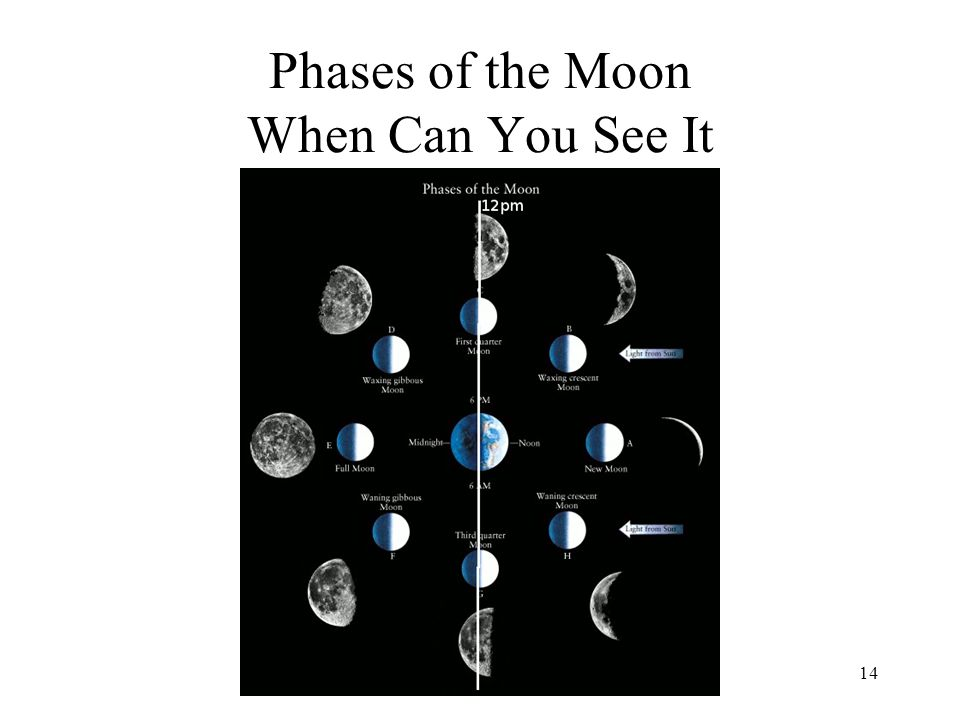 Phases of the Moon When Can You See It