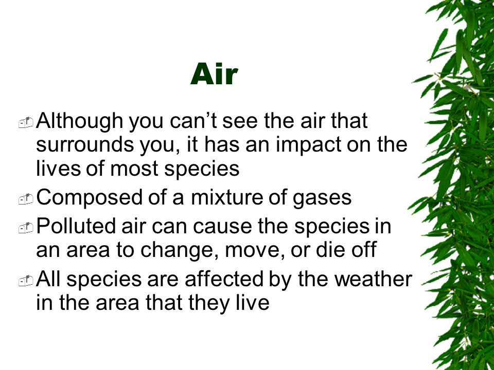 Air Although you can't see the air that surrounds you, it has an impact on the lives of most species.