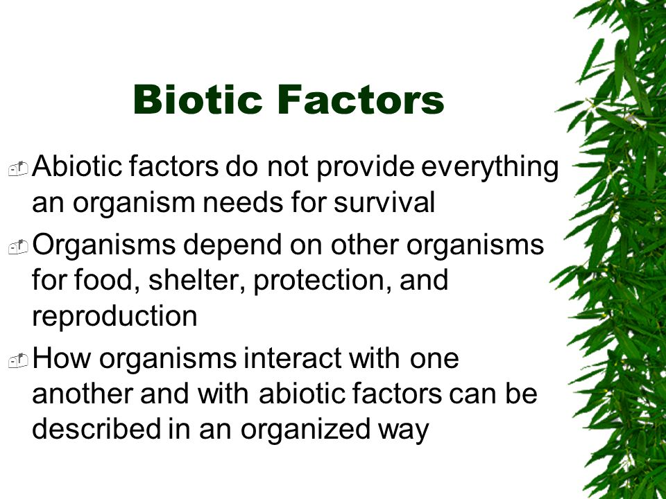 Biotic Factors Abiotic factors do not provide everything an organism needs for survival.