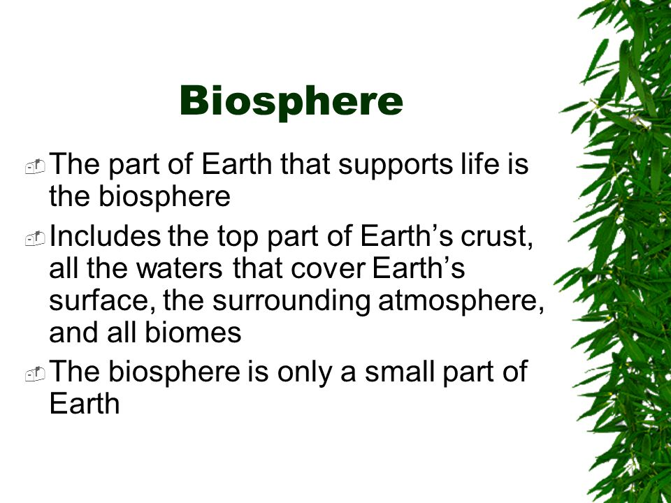 Biosphere The part of Earth that supports life is the biosphere