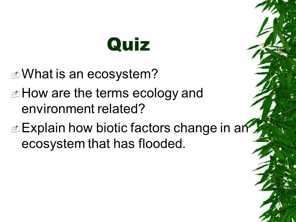 Quiz What is an ecosystem