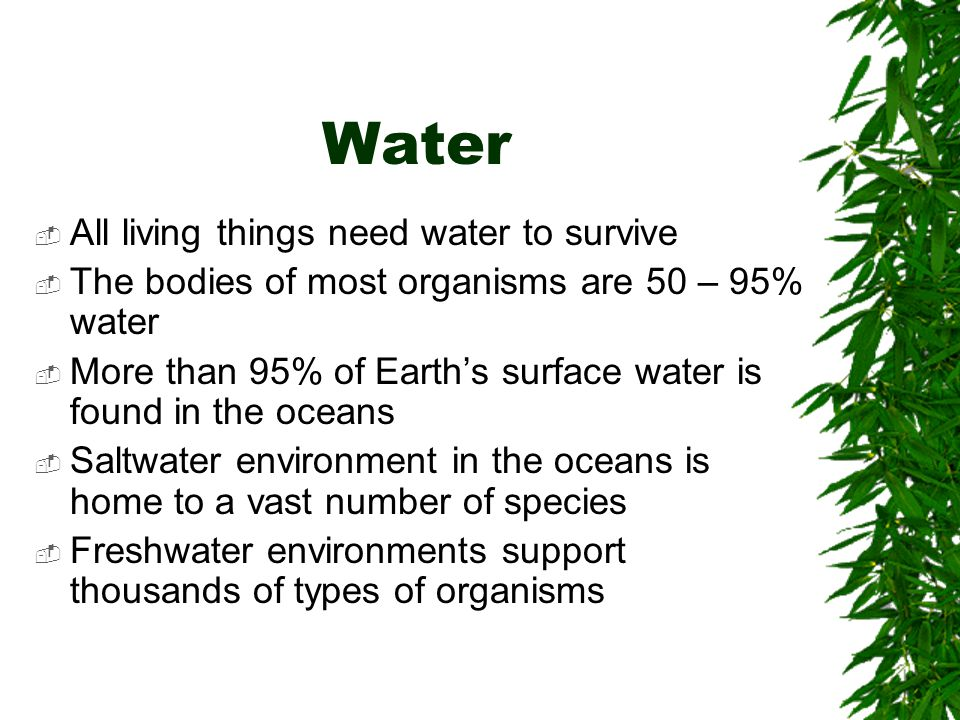 Water All living things need water to survive