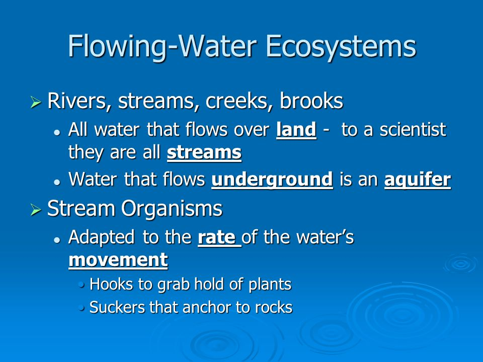 Flowing-Water Ecosystems