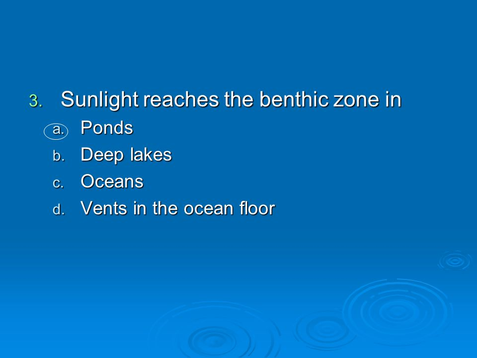 Sunlight reaches the benthic zone in