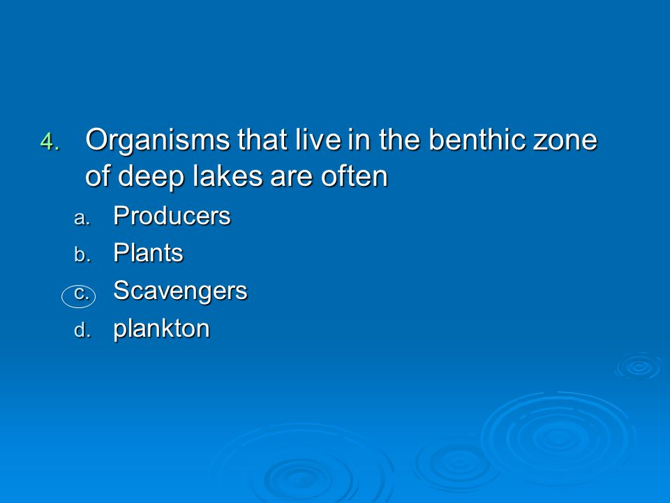 Organisms that live in the benthic zone of deep lakes are often