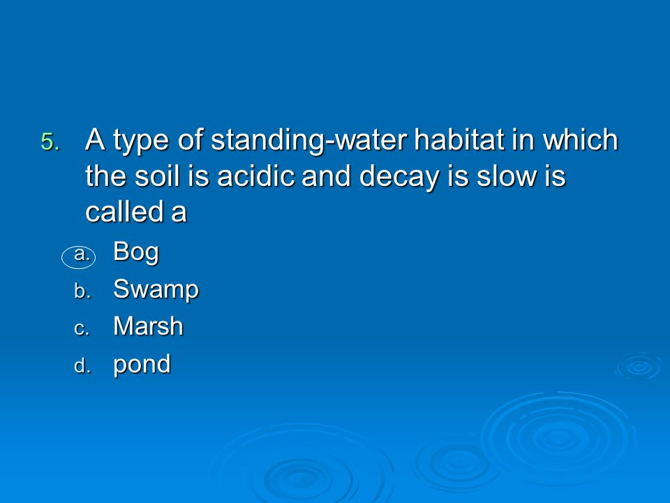 A type of standing-water habitat in which the soil is acidic and decay is slow is called a