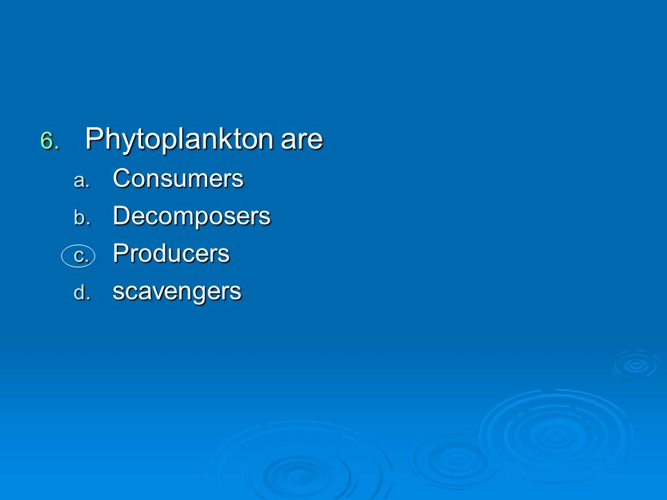 Phytoplankton are Consumers Decomposers Producers scavengers