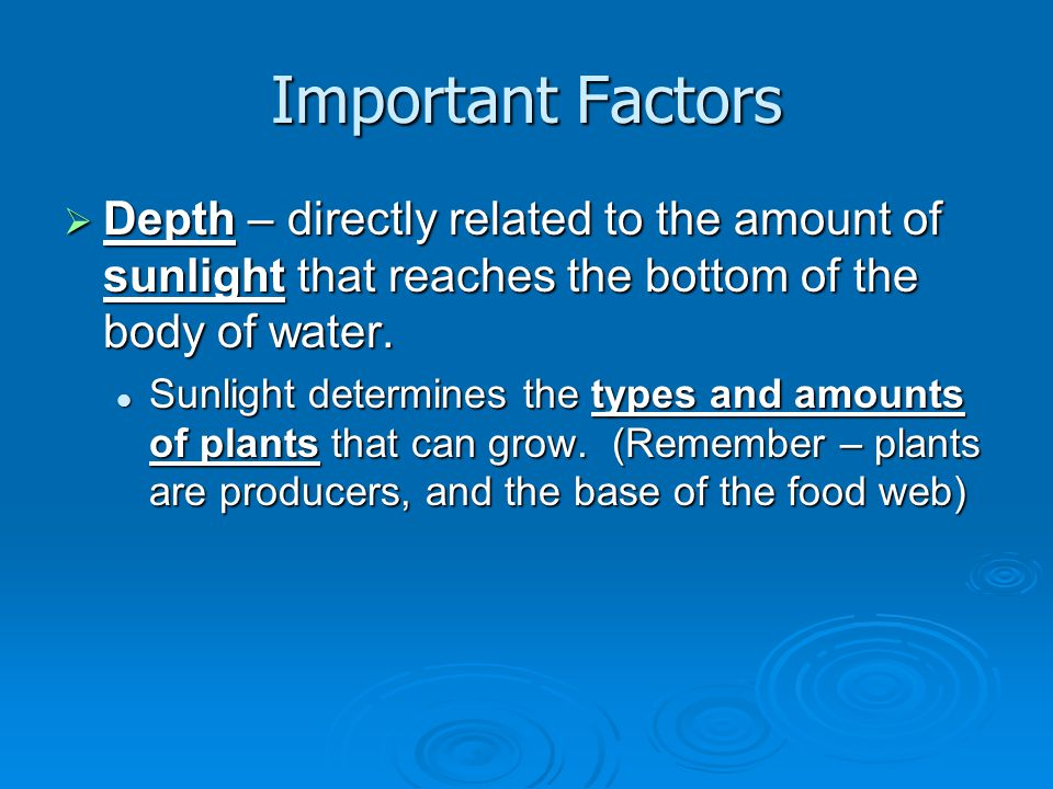 Important Factors Depth – directly related to the amount of sunlight that reaches the bottom of the body of water.